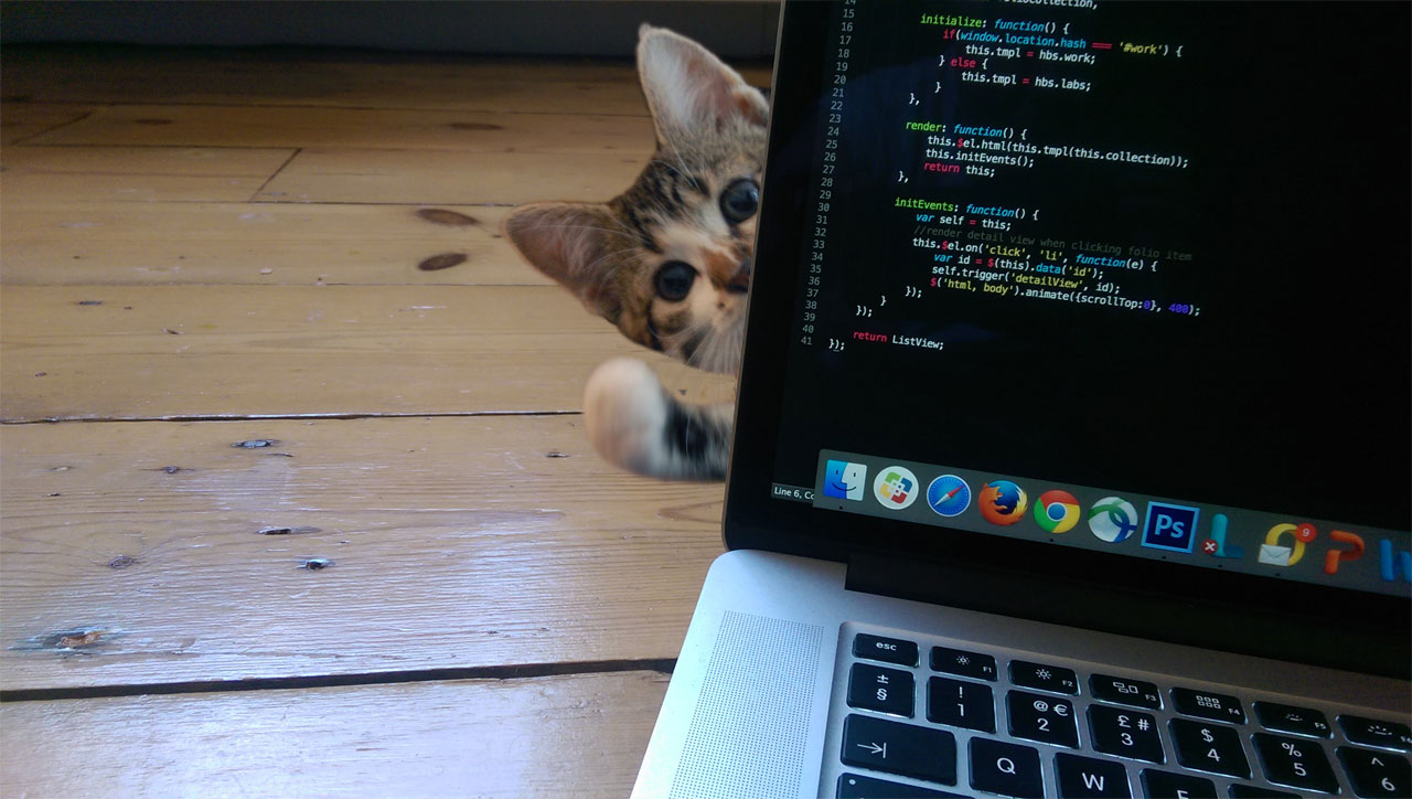 everything on the internet is better with kittens